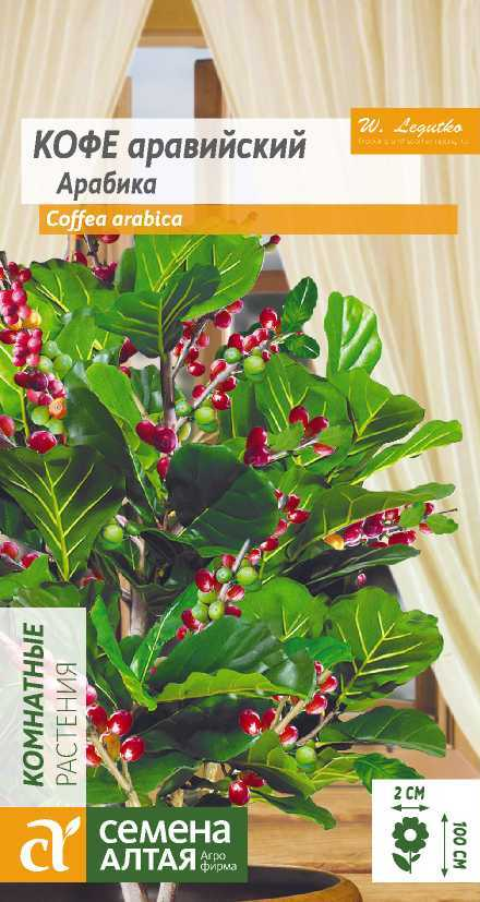 Coffea arabica toxic to cats